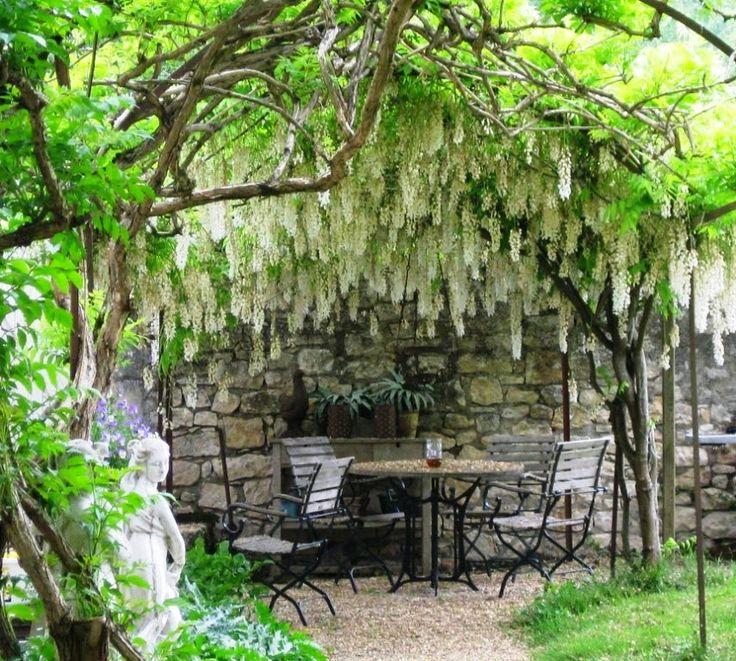 Garden Ideas Mediterranean 53 best mediterranean style garden images on pinterest