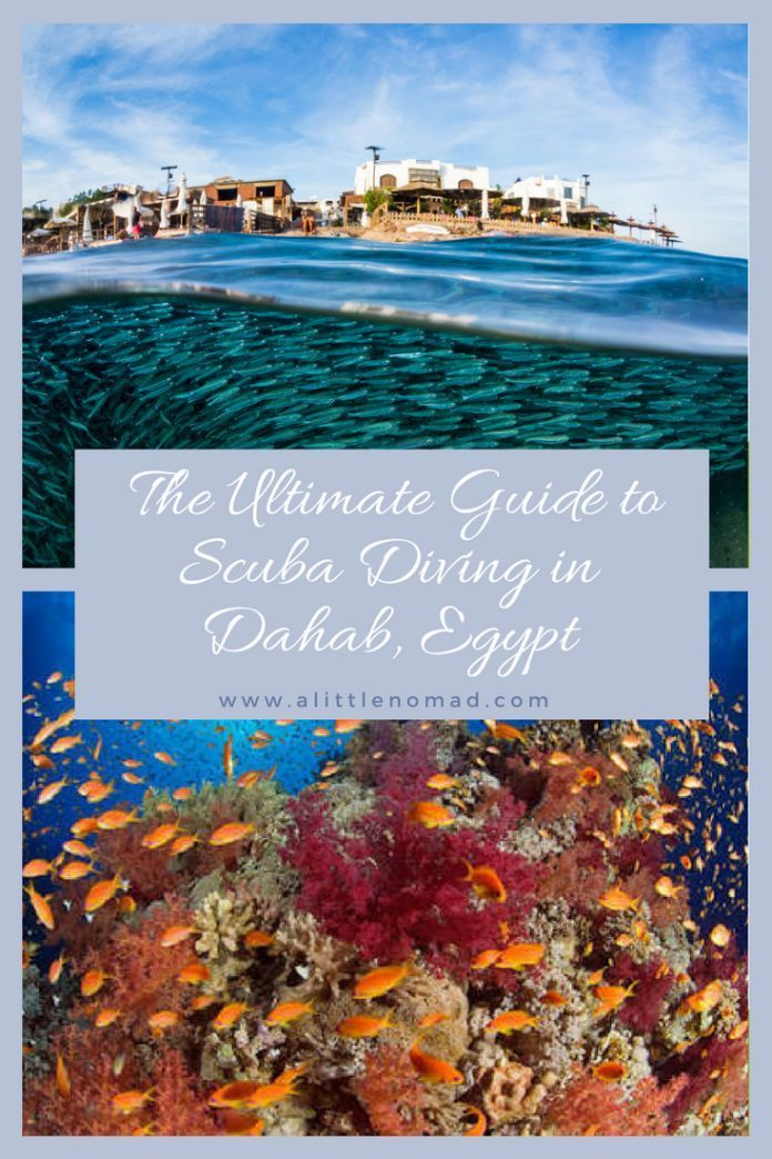 Dahab Diving The Ultimate Scuba Guide By A Local Egypt Travel Africa Travel Dahab