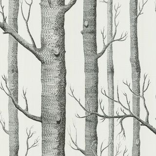 WOODS 69/12147 - New Contemporary Two - Cole & Son
