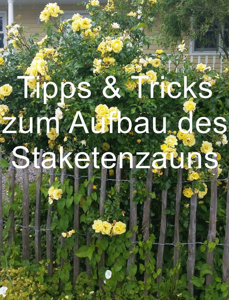 Staketenzaun DIY: Bau des Staketenzauns, Materialauswahl, Holzart und Zubehör …   – Deko für den Frühling