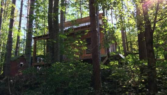 $25k Off-Grid Tiny Cabin Shell for Sale on 2.5 Acres in NY