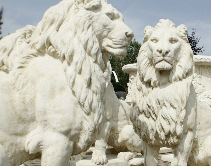 Discount Garden Statues   Pair Of Giant Stone Cast Heavy Lions 1.35 Metres  High, £