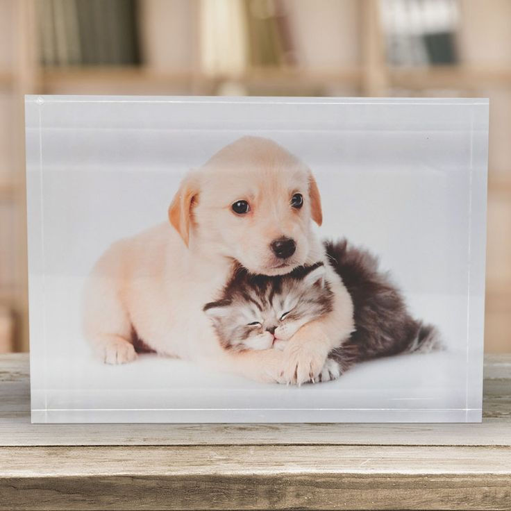 Acrylic blocks make stunning gifts, don't they? So why not consider for your partner this season to put a smile on their face. Have it displayed as a table-top decoration!  #PrintsOnGlass