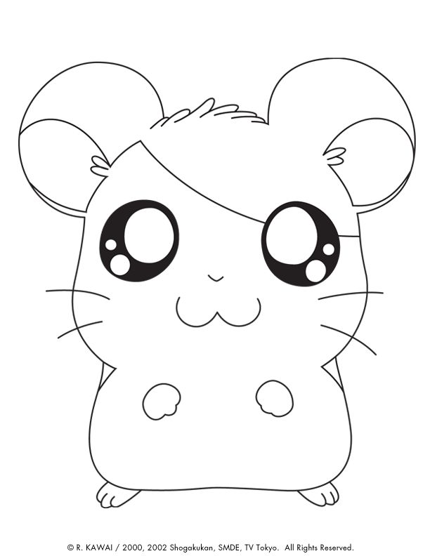 cute animal coloring pages free hamtaro cute animals coloring pages for kids - Cute Pictures To Color