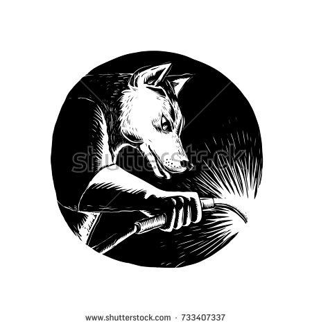 Scratchboard style illustration of a Dingo Dog wolf Welder welding viewed from side set inside circle done on scraperboard on isolated background.  #welding #scratchboard #illustration