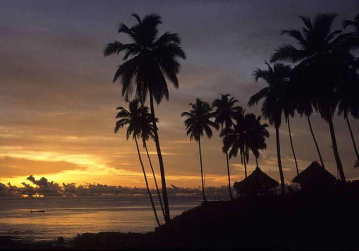 Lever de soleil au milieu des palmiers de la ville de Port Blair.