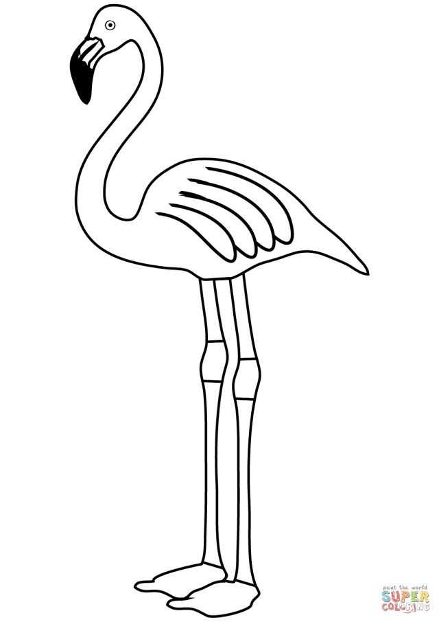 Flamingo Coloring Pages Flamingo Coloring Page Free Printable Coloring Pages Entitlementtrap Com Flamingo Coloring Page Cool Coloring Pages Butterfly Coloring Page