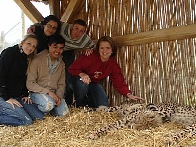 Visiting cheetahs in Stellenbosch, South Africa during summer 2007 #keeprolling