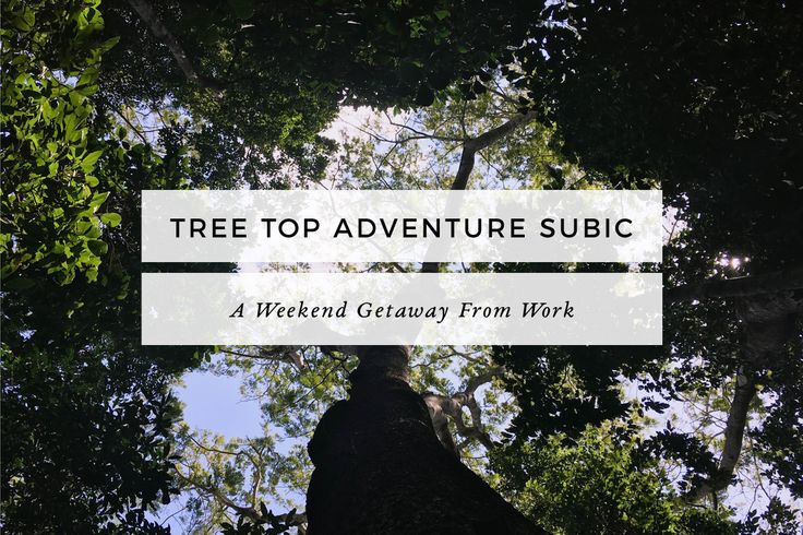 Tree Top Adventure Subic is the only Team Building facility in the Philippines with motorized activities plus Zipline adventure & more activities.