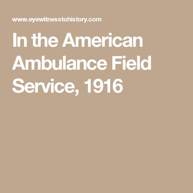 Friends of France the Field Service of the American Ambulance Described by Its Members