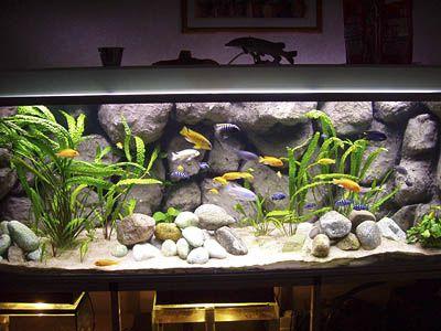 1000 ideas about aquarium backgrounds on pinterest for Diy fish tank decor