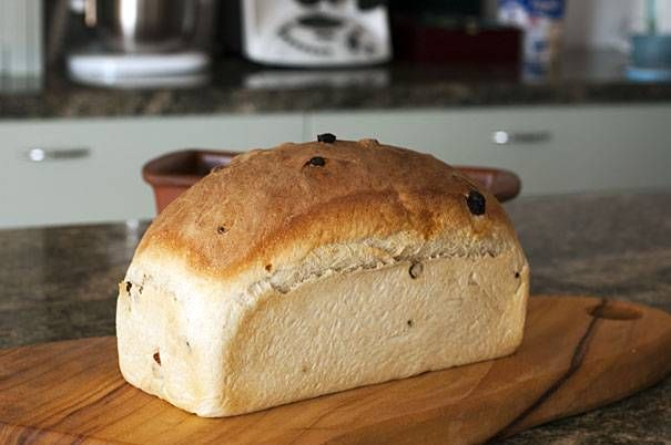 Thermomix Sultana Bread | Recipe | Bread, Thermomix bread ...