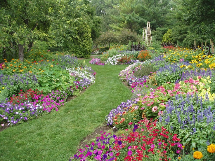 31 best All-America Selections Display Gardens images on Pinterest ...