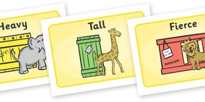 Dear Zoo Sequencing