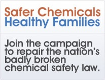 Make your voice heard for Chemical Safety Reform in 2012!: Chemical Safety, Voice Heard, Safer Chemical, Safety Reformer