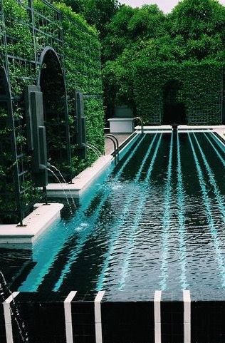 Pool surrounded by tall hedges and greenery.
