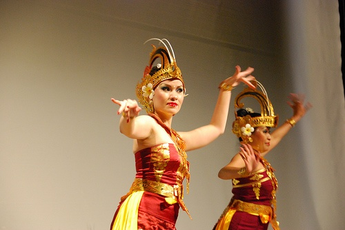 Indonesian Birds of Paradise Dance