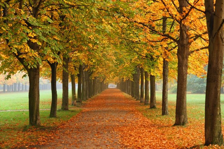 Daj się przytulić jesieni! - Pierwsze dni tegorocznej jesieni są ciepłe i słoneczne, ale wszyscy wiemy, że mimo to należy zaopatrzyć się w sweterek, który będzie z nami podczas chłodnych wieczorów. Zaglądamy dla Was, do sieciówek i wybieramy najpiękniejsze modele. Trendem …
