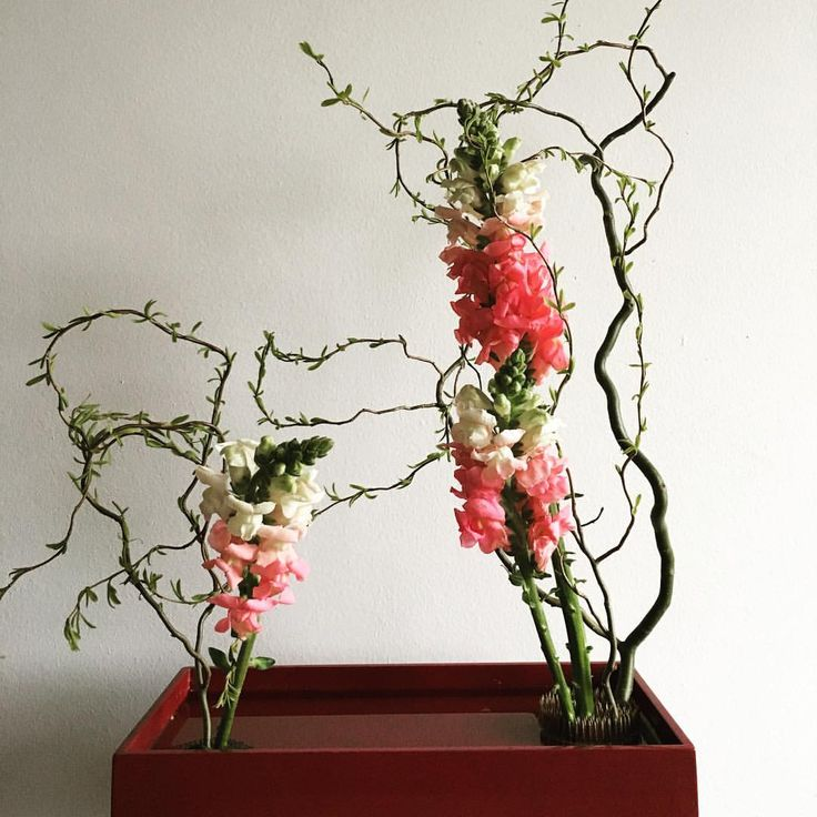Flower Arrangements Basics: 87 Best Sogetsu Curriculum 1-2 / Ikebana Arrangements