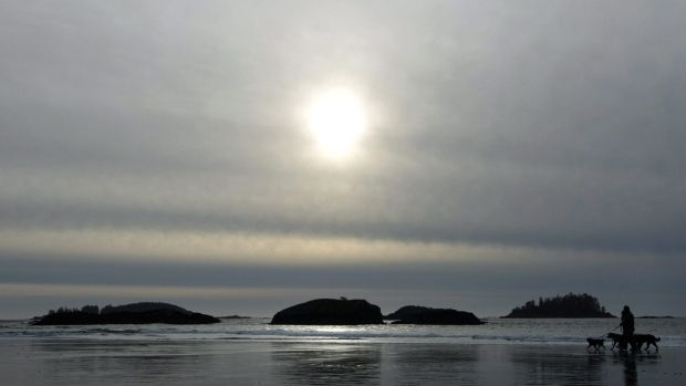 Ocean becoming more acidic, harming life. The results of a study along the west coast of North America shows acidified ocean water is widespread along the shoreline and is having devastating impacts on coastal species.   The three-year study of ocean currents was conducted along the California and Oregon coasts by researchers from Oregon State University.