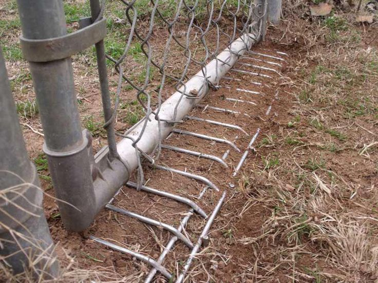 how to stop a dog from digging under a chain link fence