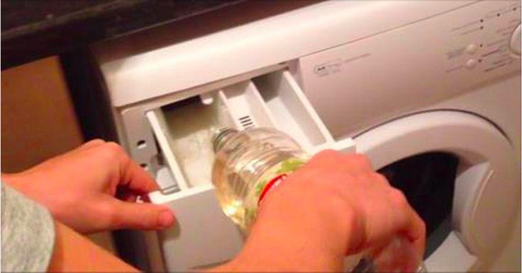 Si sa, fare il bucato non è facile: si possono commetteremoltierrori e anche trovare il giusto detergente per la lavatrice… a volte sembra difficile tanto quanto trovare un ago in un pagliaio. In realtà,...