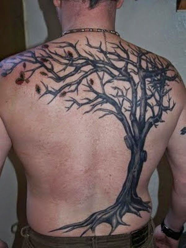 Fine Willow Tree Tattoo For Shoulder photo - 3