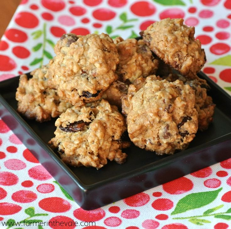 Crunchy Oatmeal Chip Cookies with Dried Fruit and Nuts