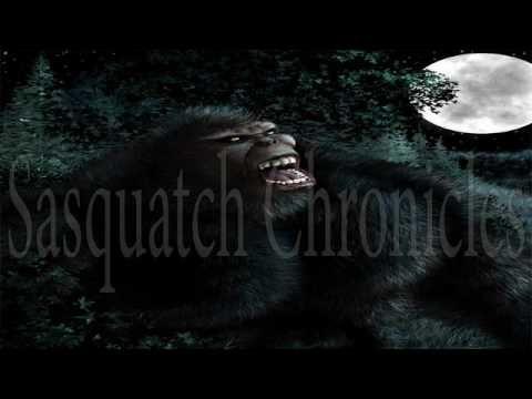"Bigfoot Hotspot Radio SC EP:290 Bigfoot Stories with Tim ""Coonbo"" Baker"