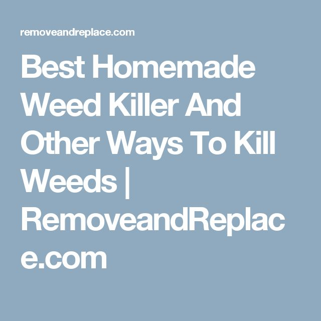 Best Homemade Weed Killer And Other Ways To Kill Weeds | RemoveandReplace.com