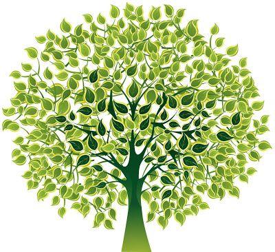Todo mundo ligado na ciência: Dia 21/09 dia da árvore, Fiquem Ligados !