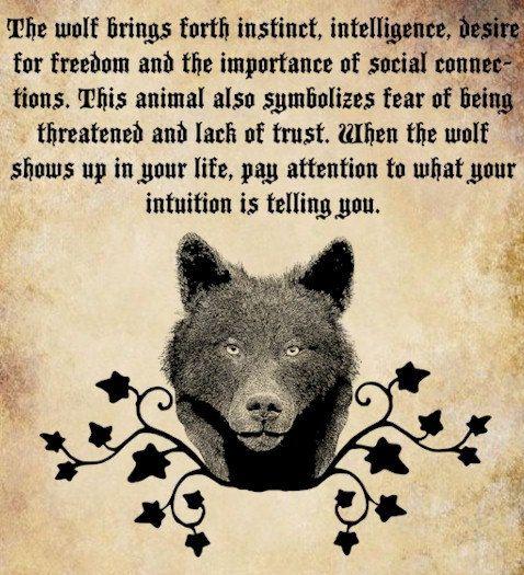 wolf Spirit animal clip art png file by DigitalGraphicsShop, $2.50