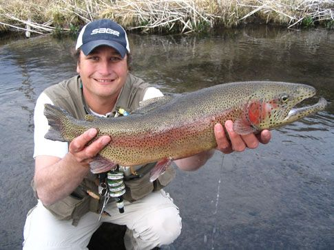 255 best images about my amazing state of utah on for Wolf river fremont fishing report
