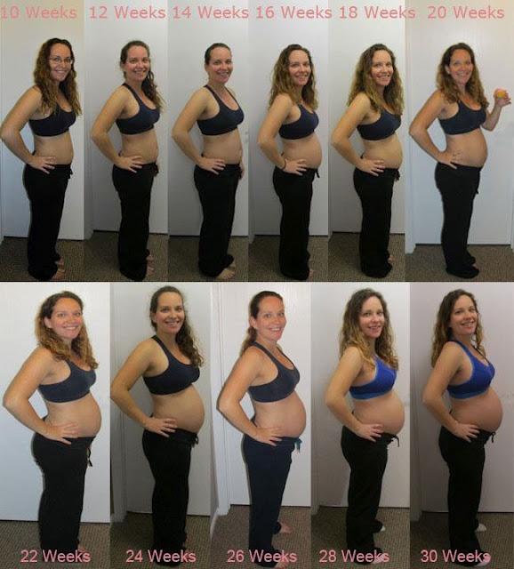 Pregnancy Belly Week By Week Chart Gallery