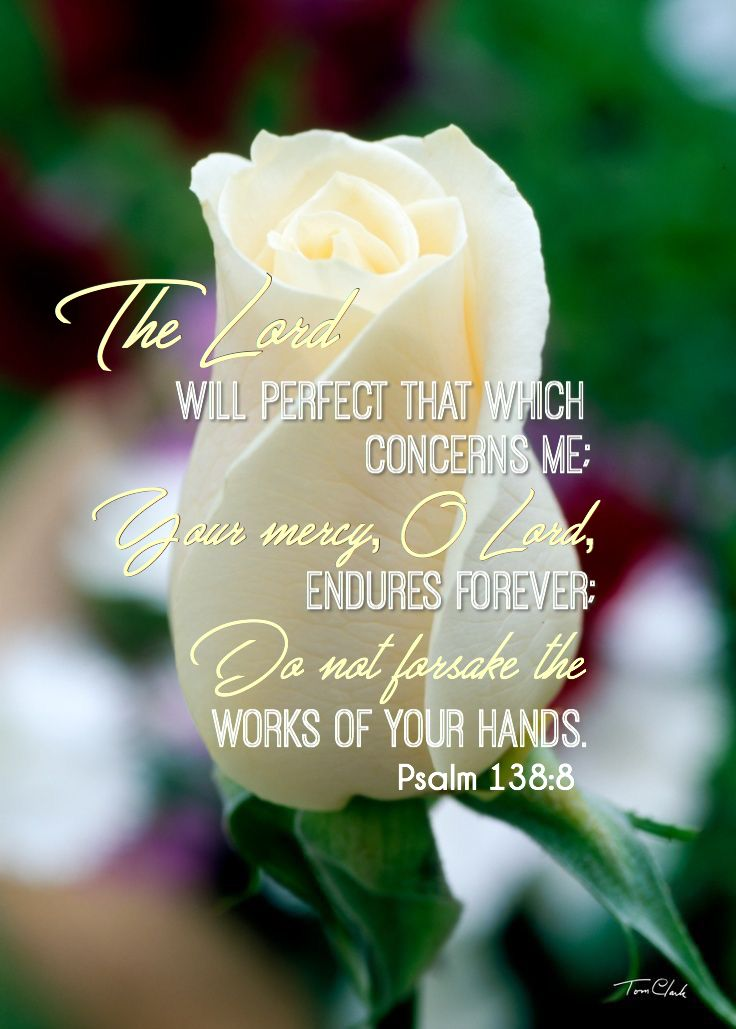 """Psalm 138:8.  """"The Lord will perfect that which concerns me:  Your mercy, O Lord, endures forever; do not forsake the works of Your hands."""""""