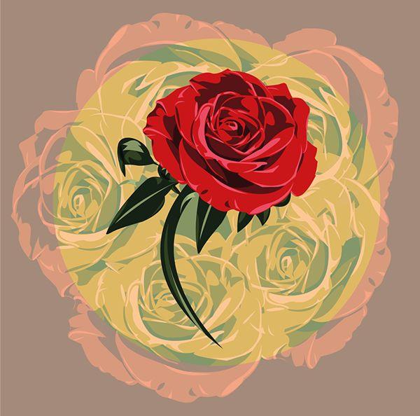Rosa on Behance