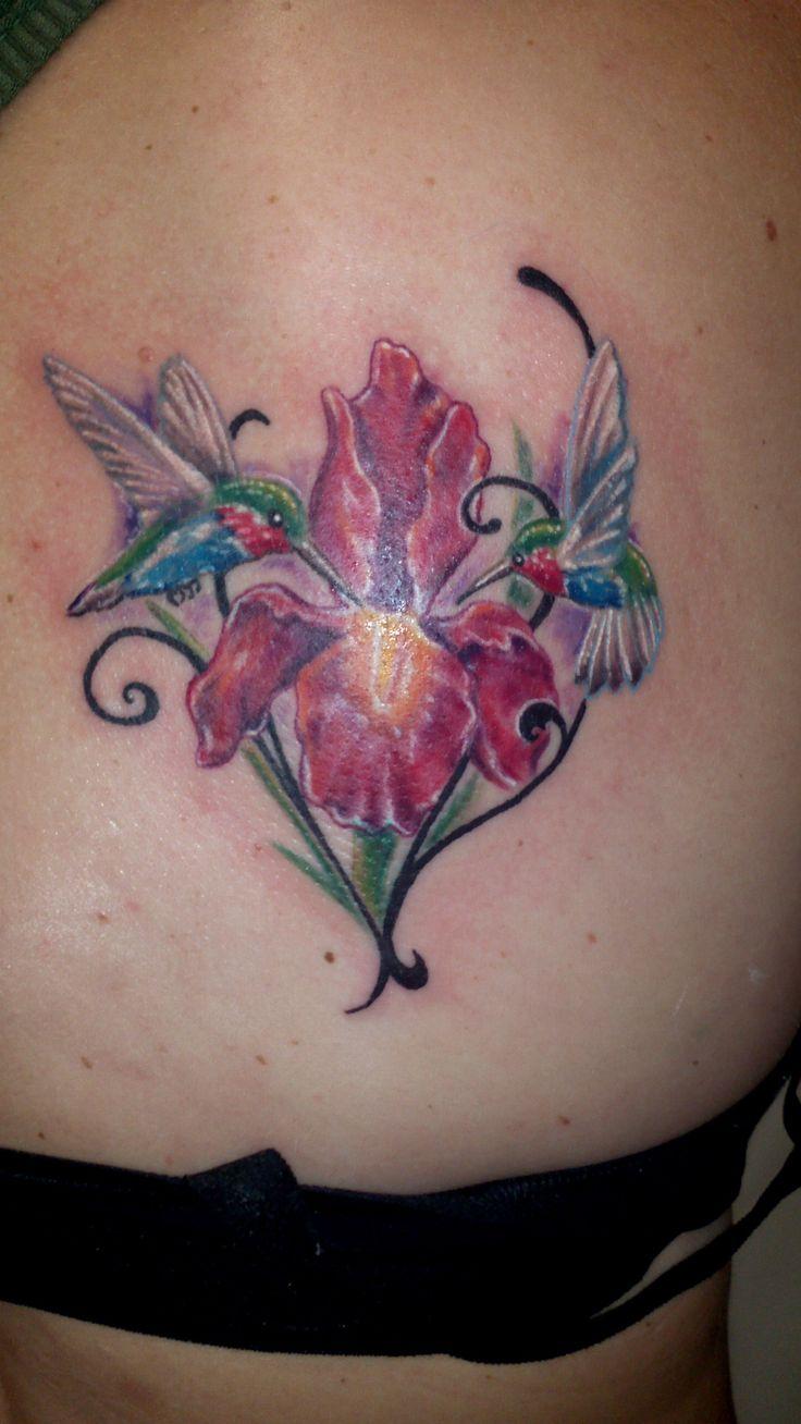 Hummingbird Flower Iris Tattoo Color