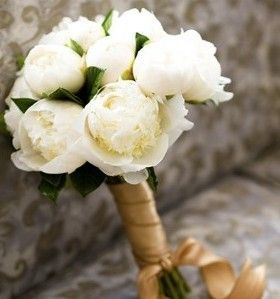 bridesmaid flowers - White peonies with some hypericum berries as filler?