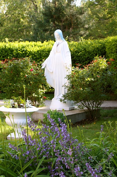 17 Best Images About Mary 39 S Garden On Pinterest Gardens Statue Of And Holy Mary