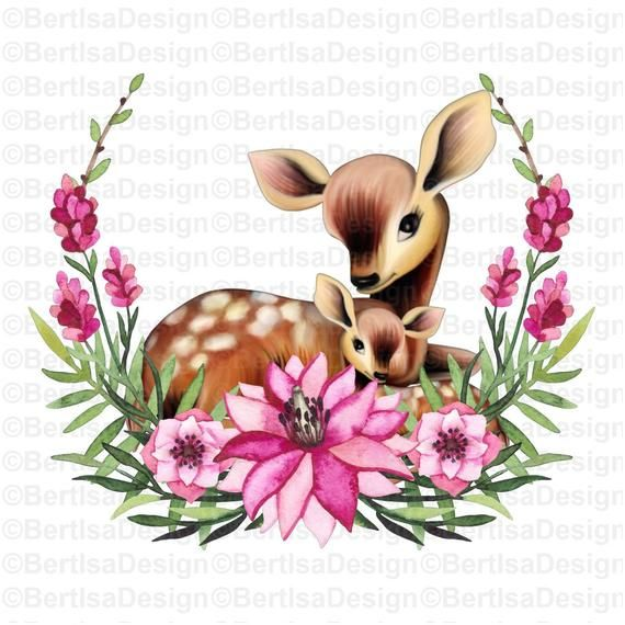 Sublimation Design Watercolor Mother And Baby Deer Png Etsy Clip Art Baby Deer Digital Graphics