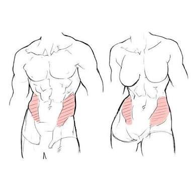 「太腿 描き方」の画像検索結果