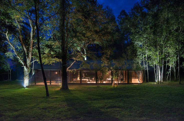 House on Lake Ranco reuses derelict barn's roof and timber
