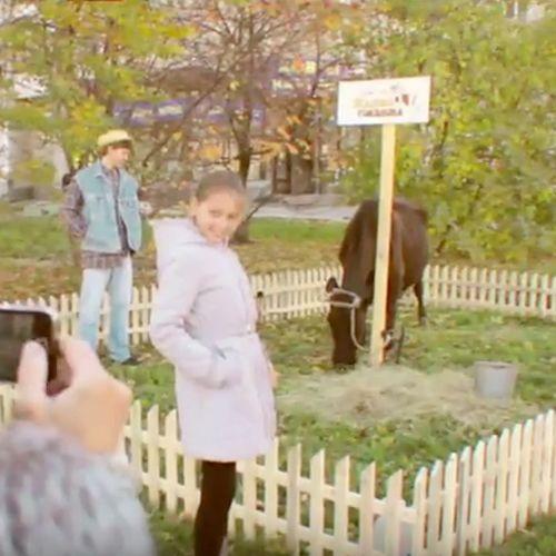 Guerilla Marketing Restaurant: Ein kleines Steakhaus in Ekaterinburg (Russland) machte mit einer einzigen Kuh und einer Plakatwand auf großartige Art und...