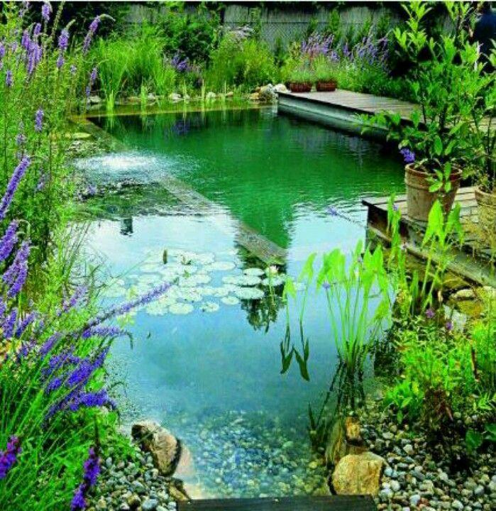 1000+ Bilder zu Swimming ponds & pools auf Pinterest ...