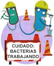 En la biolixiviación se utilizan microorganismos que obtienen su energía de la oxidación de compuestos inorgánicos: son las bacterias quimiolitoautotróficas. Literalmente, bacterias que comen piedras.   La biolixiviación tiene la ventaja de no liberar gases tóxicos o corrosivos y requerir poca energía. En consecuencia, el impacto ambiental de la fuente energética es poco significativo y hay menos riesgos de accidentes contaminantes.