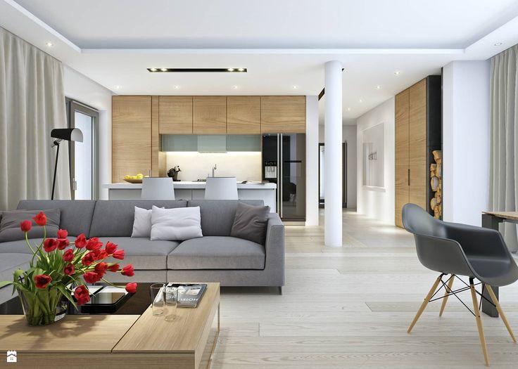 DOBRY 3 - salon - zdjęcie od DOMY Z WIZJĄ - nowoczesne projekty domów - Salon - Styl Skandynawski - DOMY Z WIZJĄ - nowoczesne projekty domów