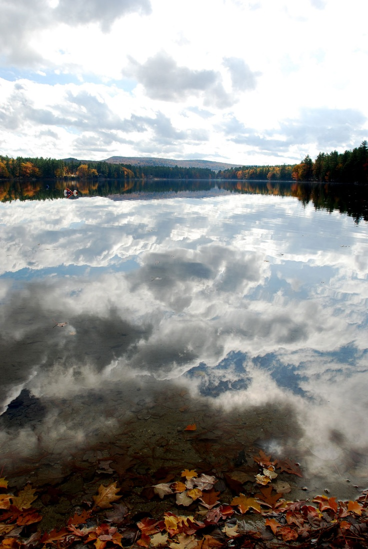 Pilgrim Pines/ Lake Swanzey. One of my favorite places on earth. Such a beautiful picture!