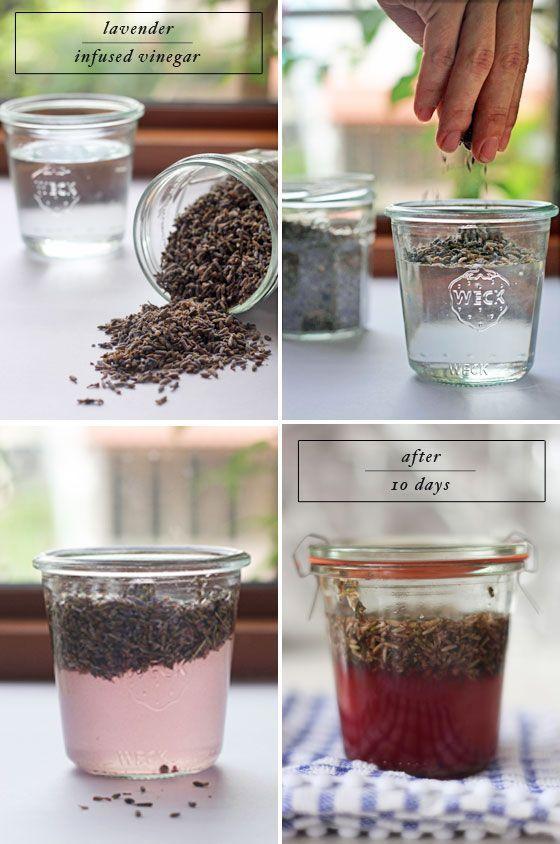 Lavender All-Purpose Cleaner Recipe Ingredients:  1 cup vinegar 1/4 cup dried lavender water