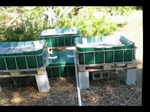 Aquaponics (The Build) - YouTube