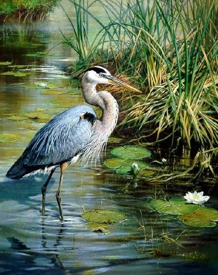 White Egret Or Heron Painting On Black Canvas